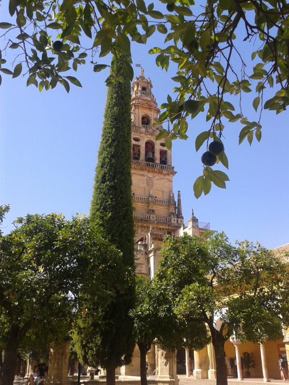 Torre-minarete de la Mezquita de Córdoba desde el patio de los naranjos.