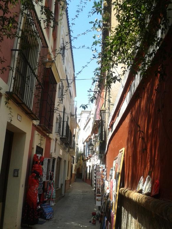Otra de las calles de Sant. Cruz